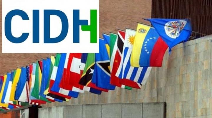 Mandato y Funciones de la Comisión Interamericana de Derechos Humanos (CIDH)